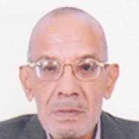 Mohamed Amin Kenawy